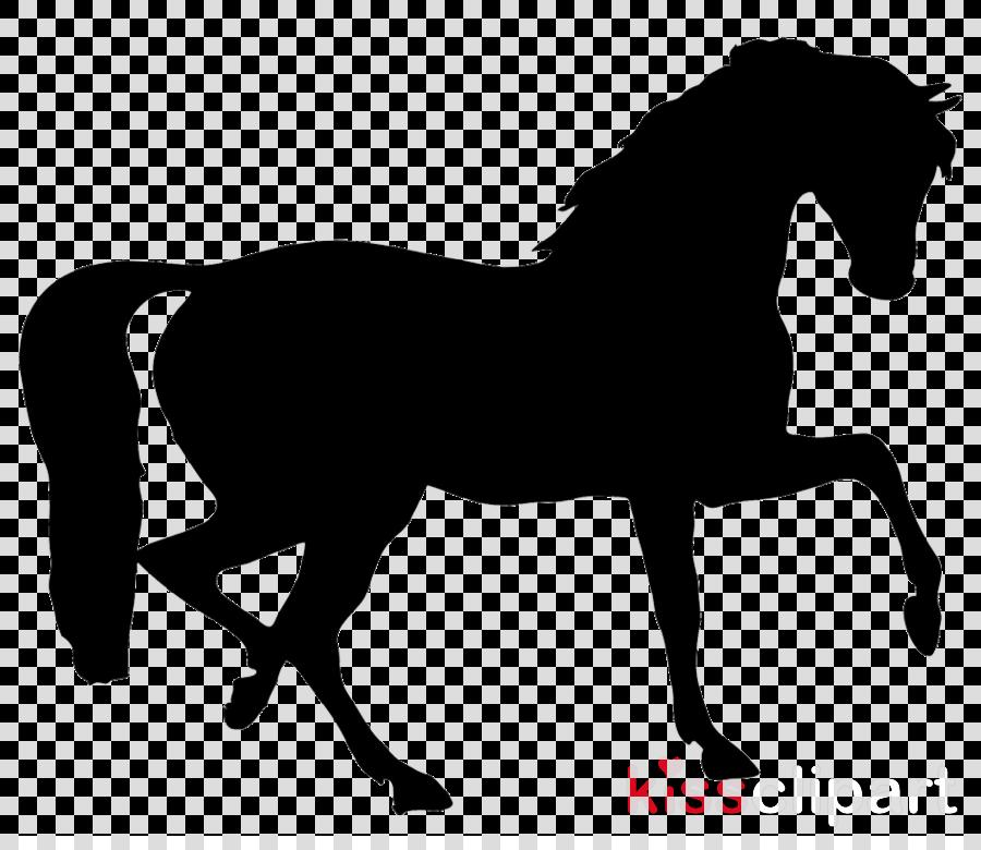 horse mane animal figure silhouette mare