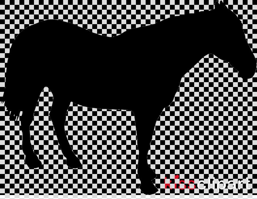 horse mane clip art mare shetland pony