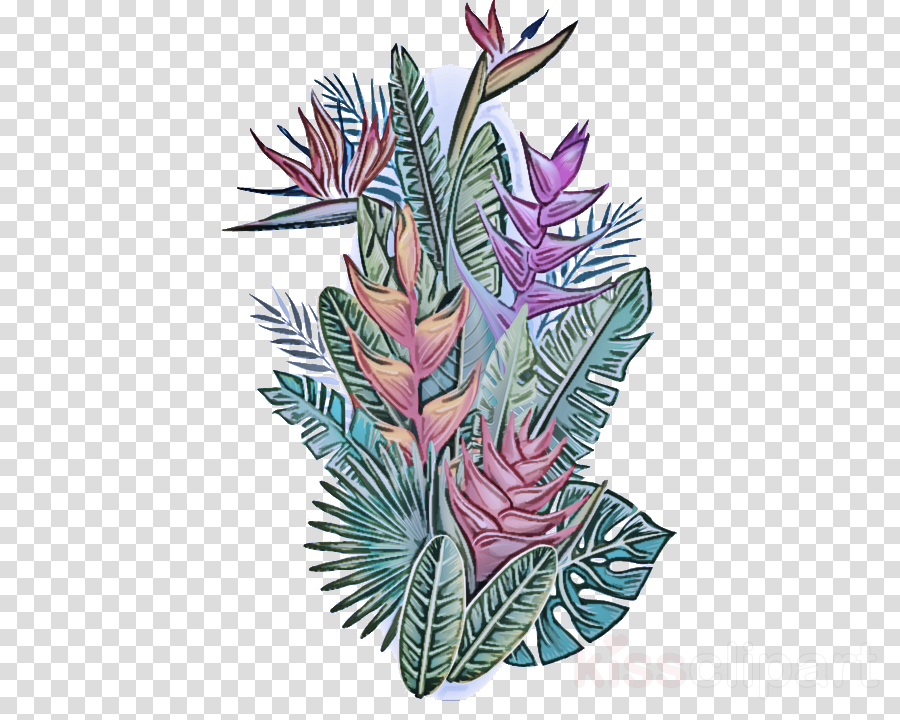 flower plant leaf terrestrial plant flowering plant