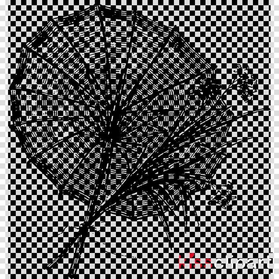 umbrella black-and-white leaf monochrome photography line
