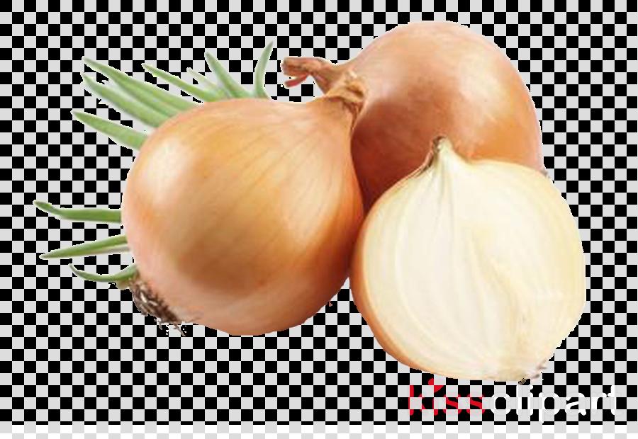 yellow onion shallot food onion vegetable