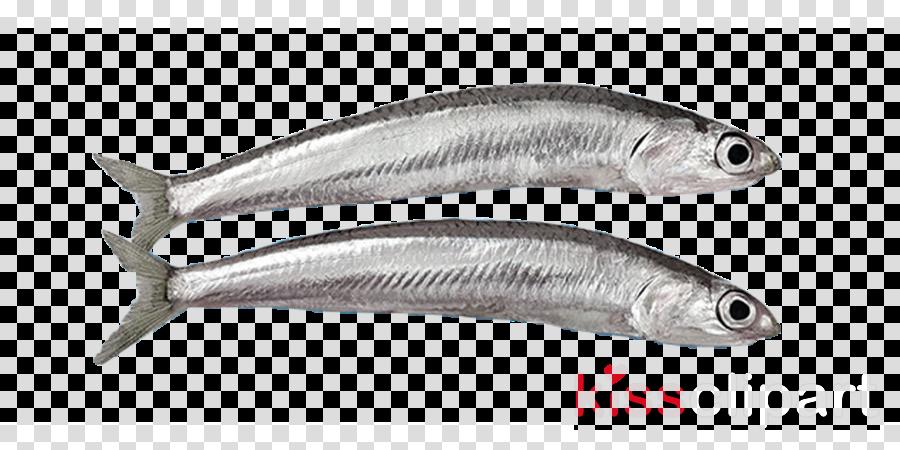 fish fish anchovy fish products forage fish