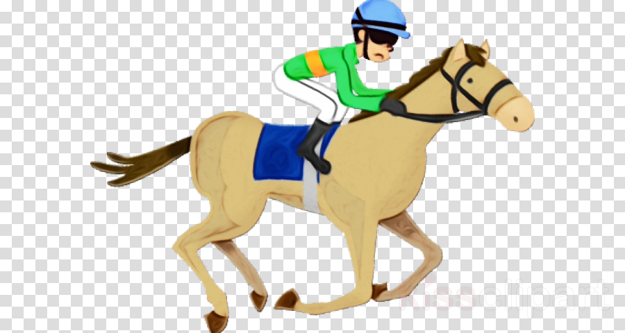 jockey horse rein bridle animal sports