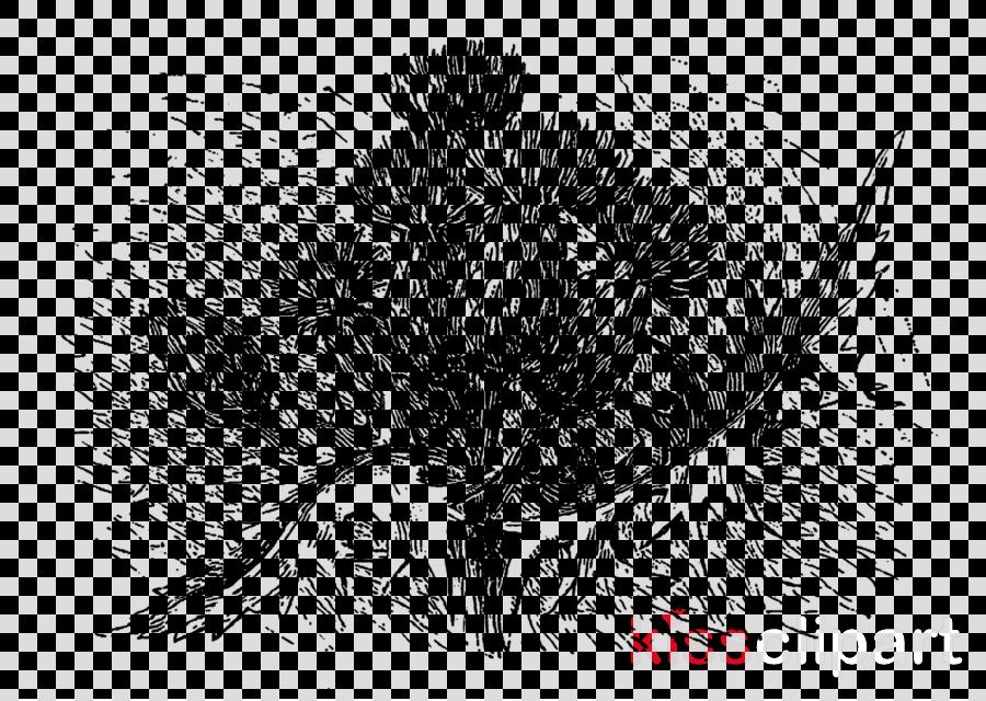 drawing plant sketch bird nest flower