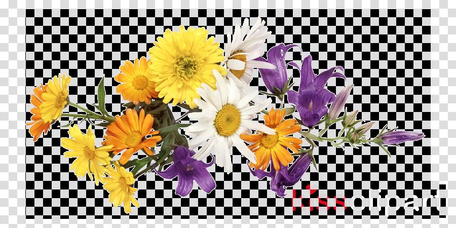 flower flowering plant bouquet cut flowers plant