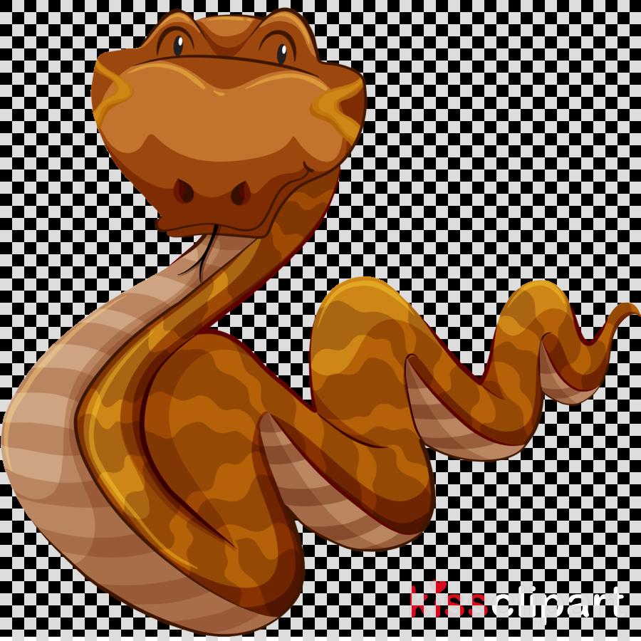 cartoon snake python boa constrictor reptile