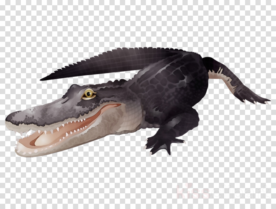 alligator crocodilia crocodile american alligator animal figure