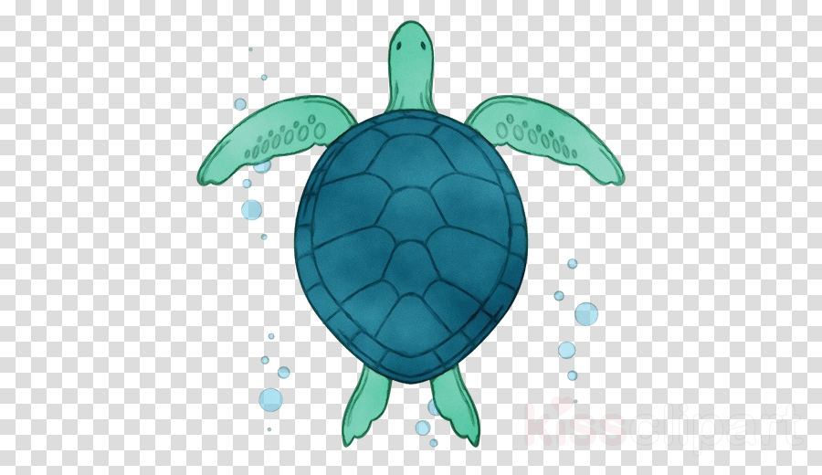 sea turtle green sea turtle turtle green tortoise