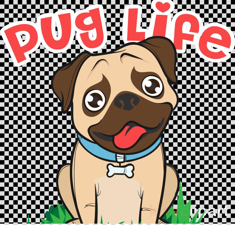 pug dog cartoon snout cheek