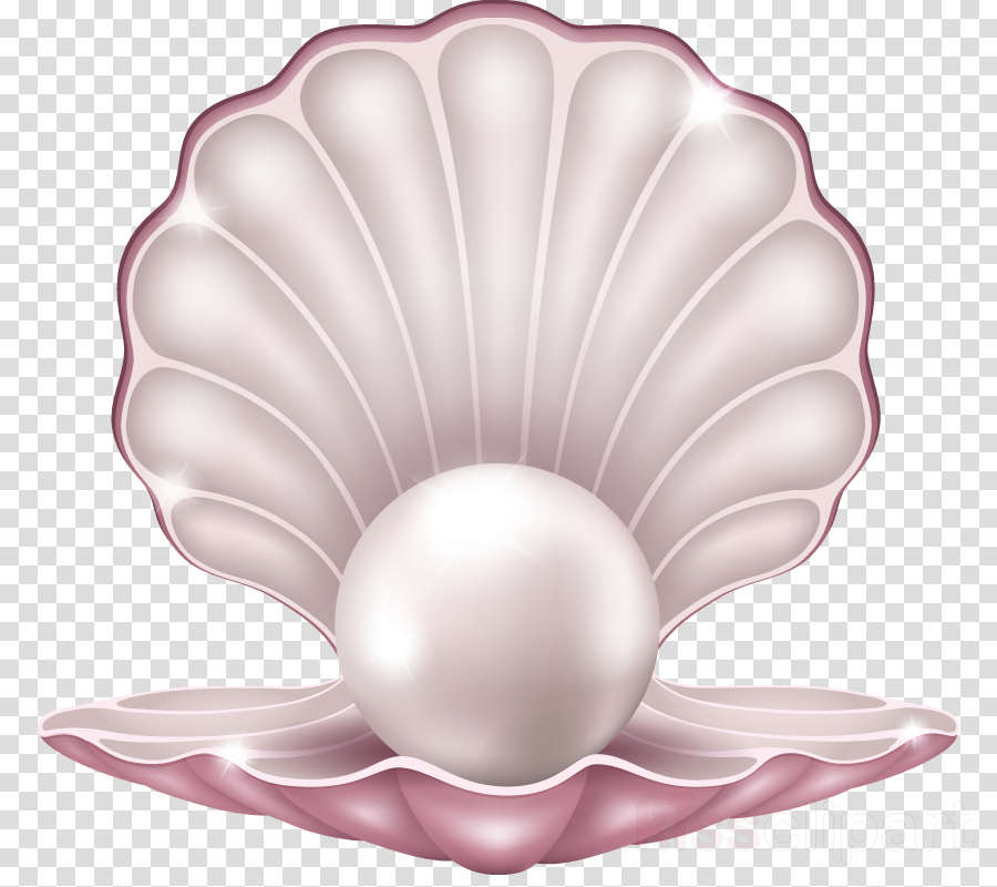 pink pearl petal natural material