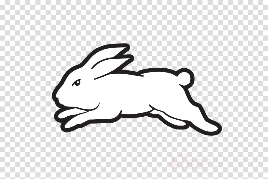 rabbit white rabbits and hares hare coloring book