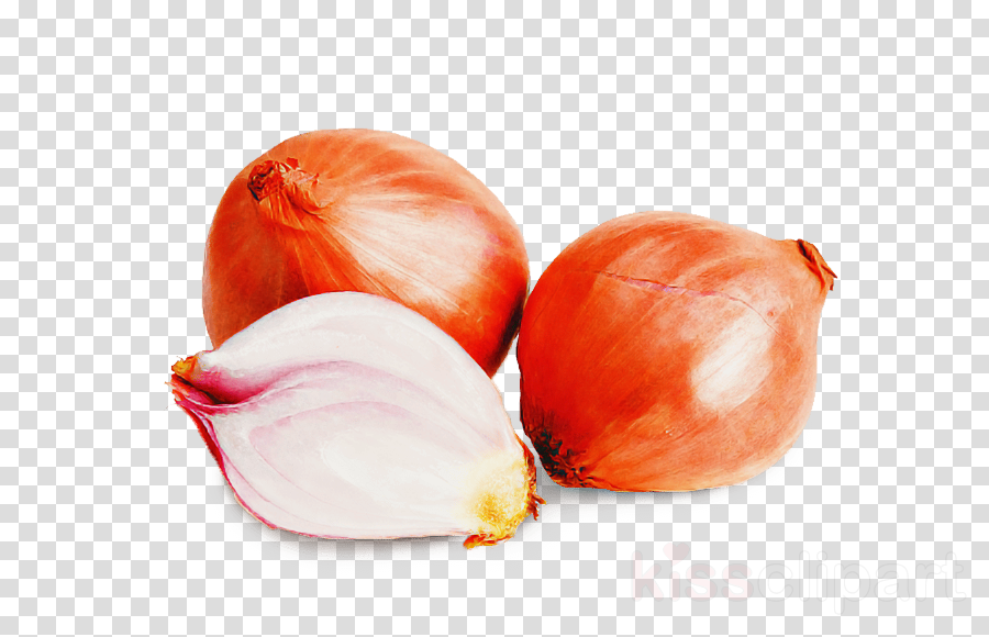 food shallot vegetable plant onion