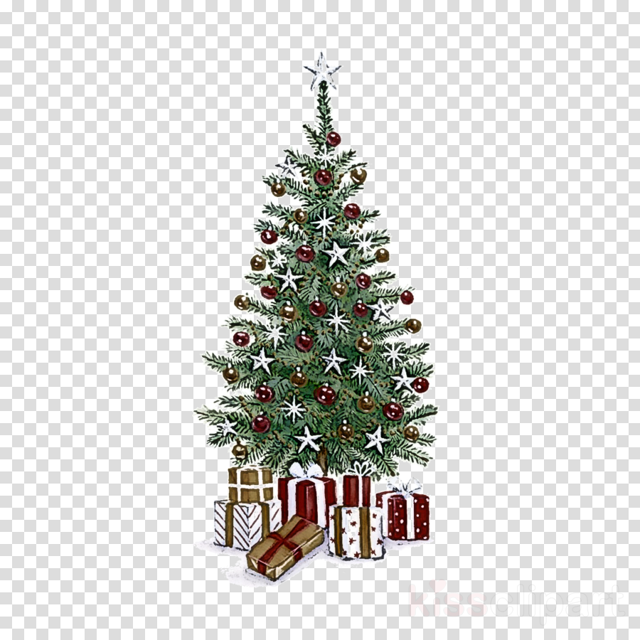 Christmas Tree Art.Christmas Tree Clipart Christmas Tree Colorado Spruce