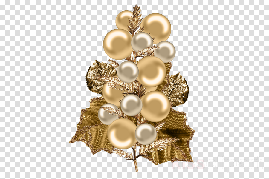 brooch pearl jewellery ornament plant