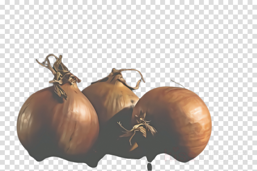 vegetable yellow onion plant onion food