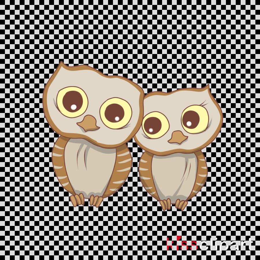 owl bird of prey bird cartoon barn owl