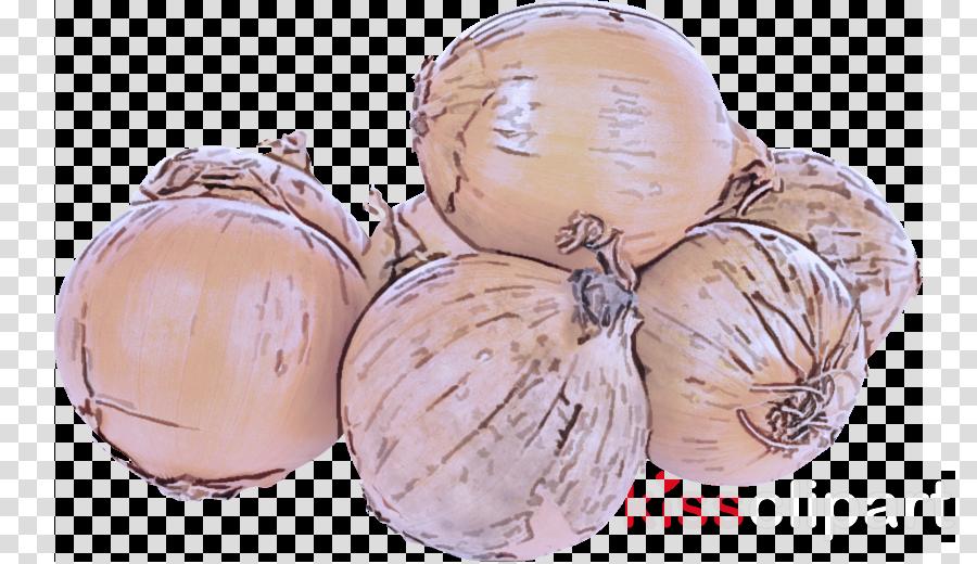 food shallot vegetable onion yellow onion