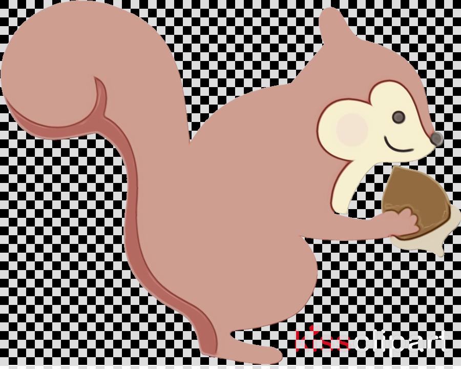 squirrel cartoon tail ferret skunk