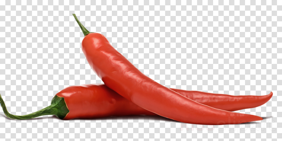 serrano pepper malagueta pepper tabasco pepper chili pepper bird's eye chili