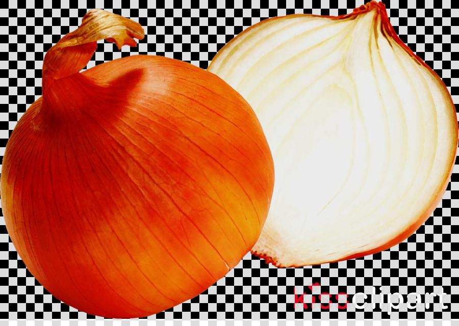 yellow onion vegetable onion food plant