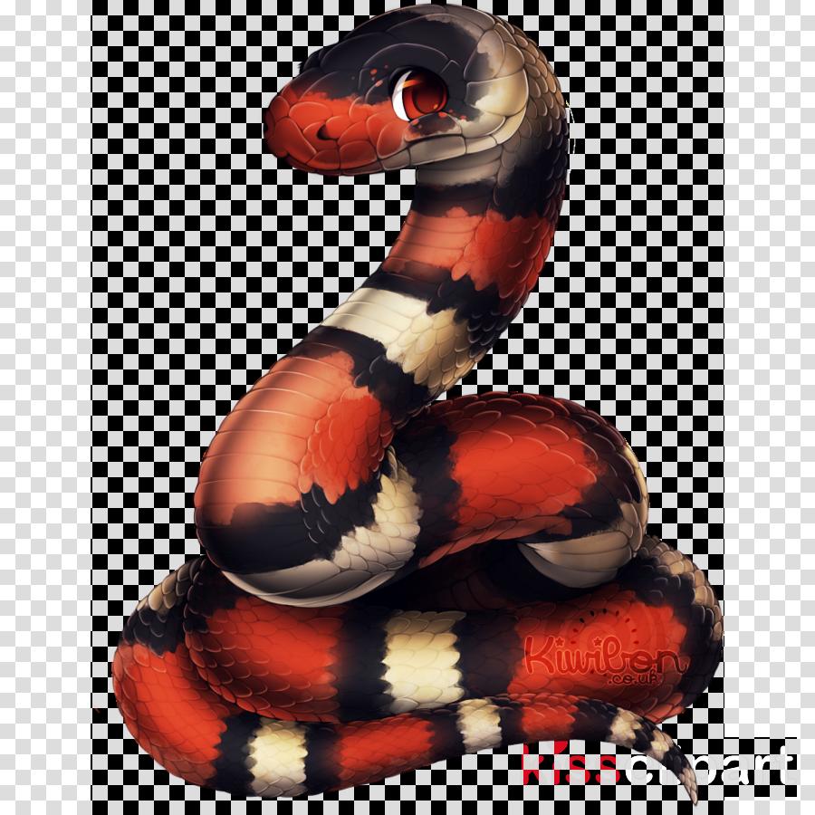 serpent snake milksnake reptile scaled reptile