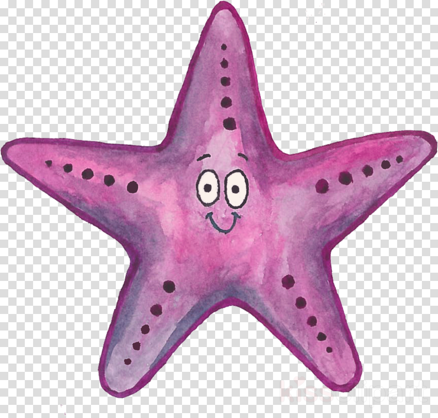 starfish pink purple star magenta