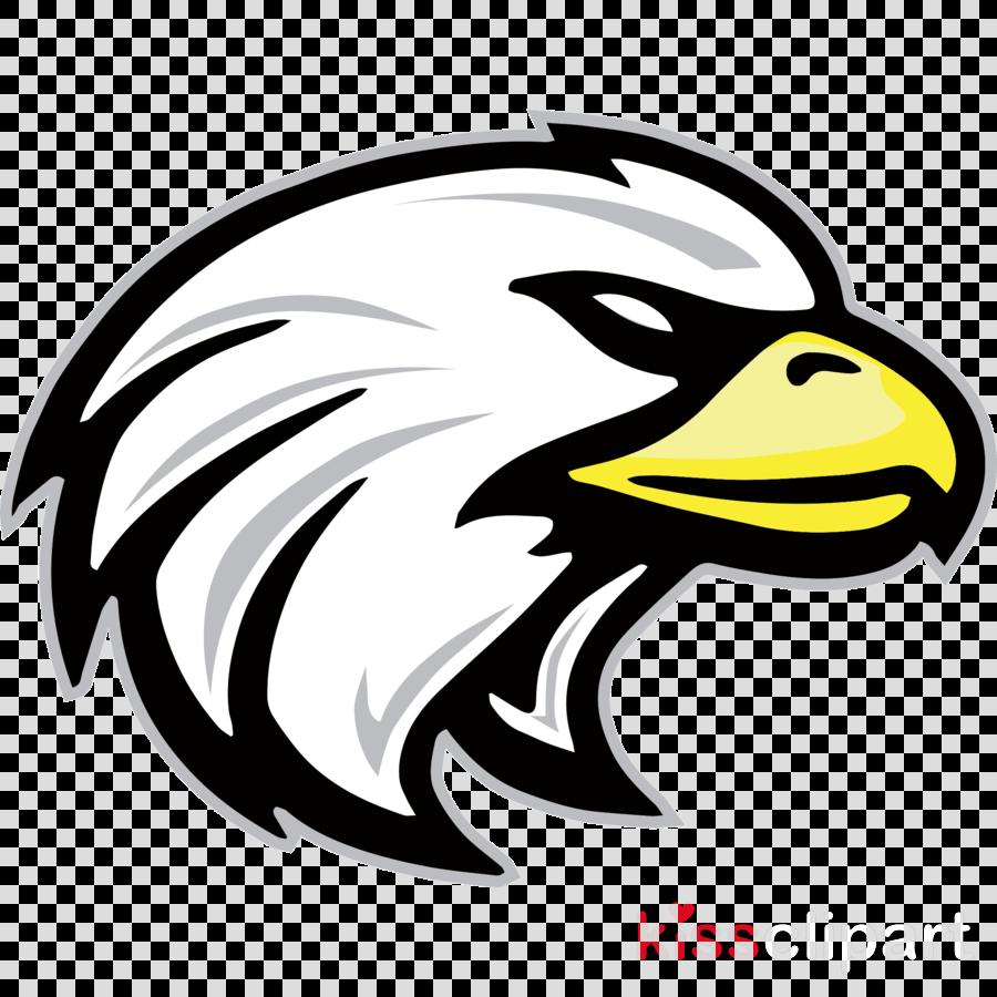 eagle bird logo beak bald eagle