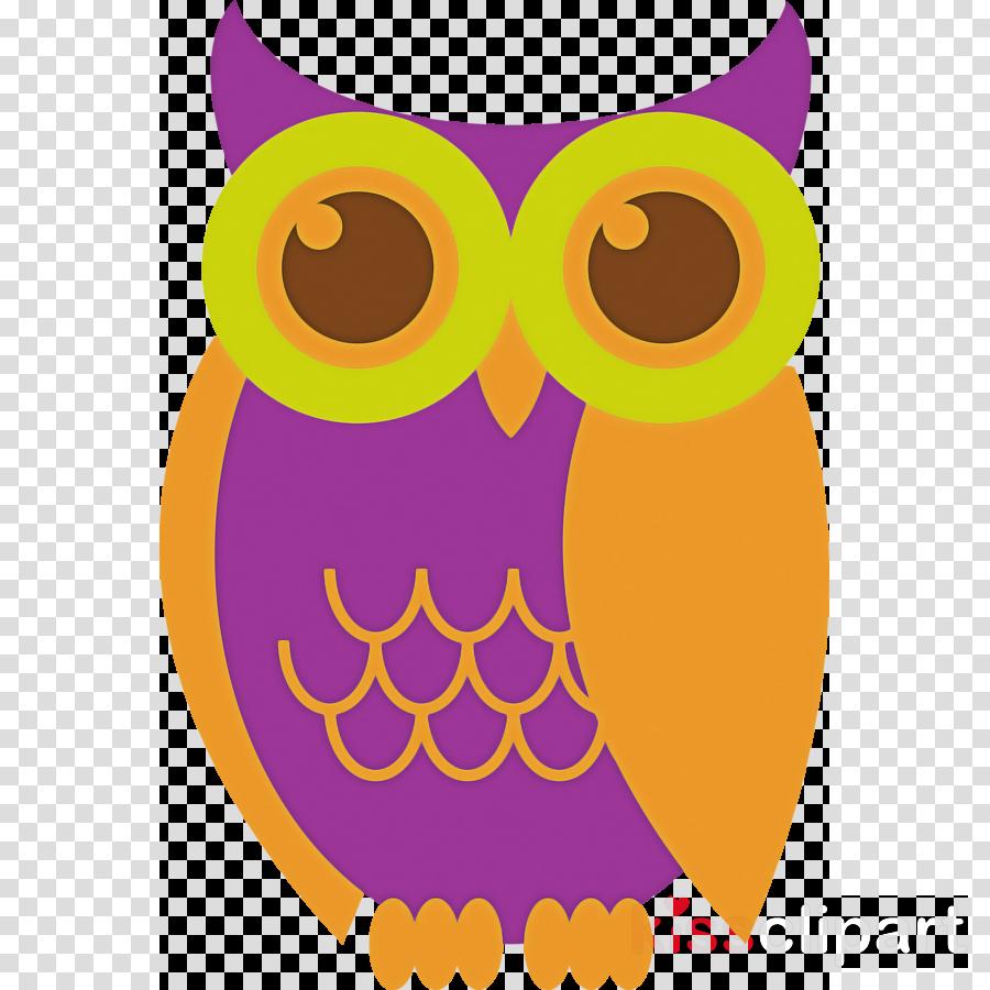 owl bird of prey bird yellow cartoon