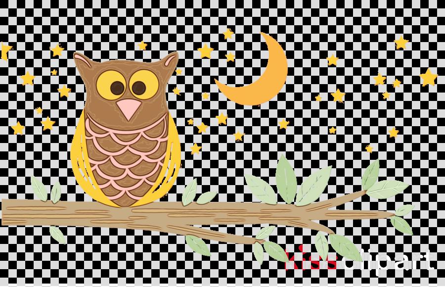 owl bird branch bird of prey barn owl