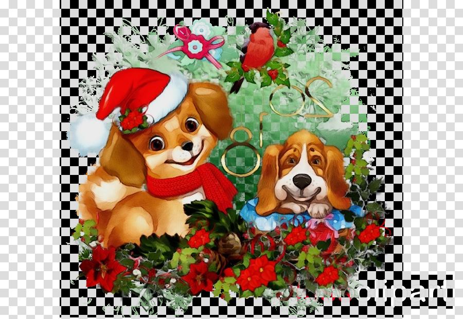 dog puppy puppy love beagle christmas eve