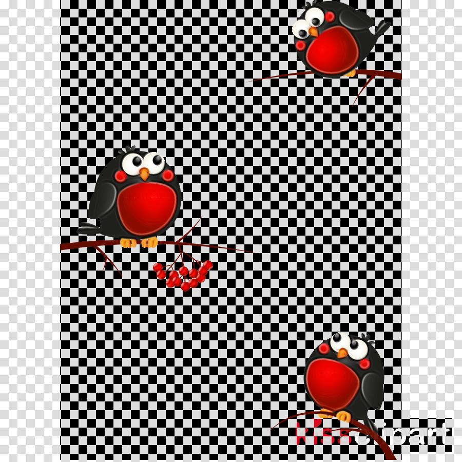 red bird branch perching bird european robin