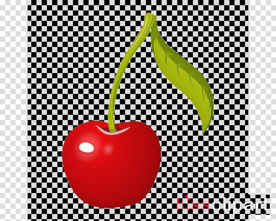 cherry plant fruit leaf food