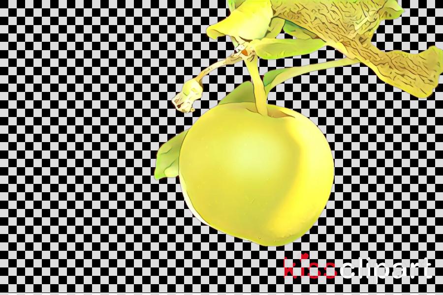 yellow plant fruit tree food