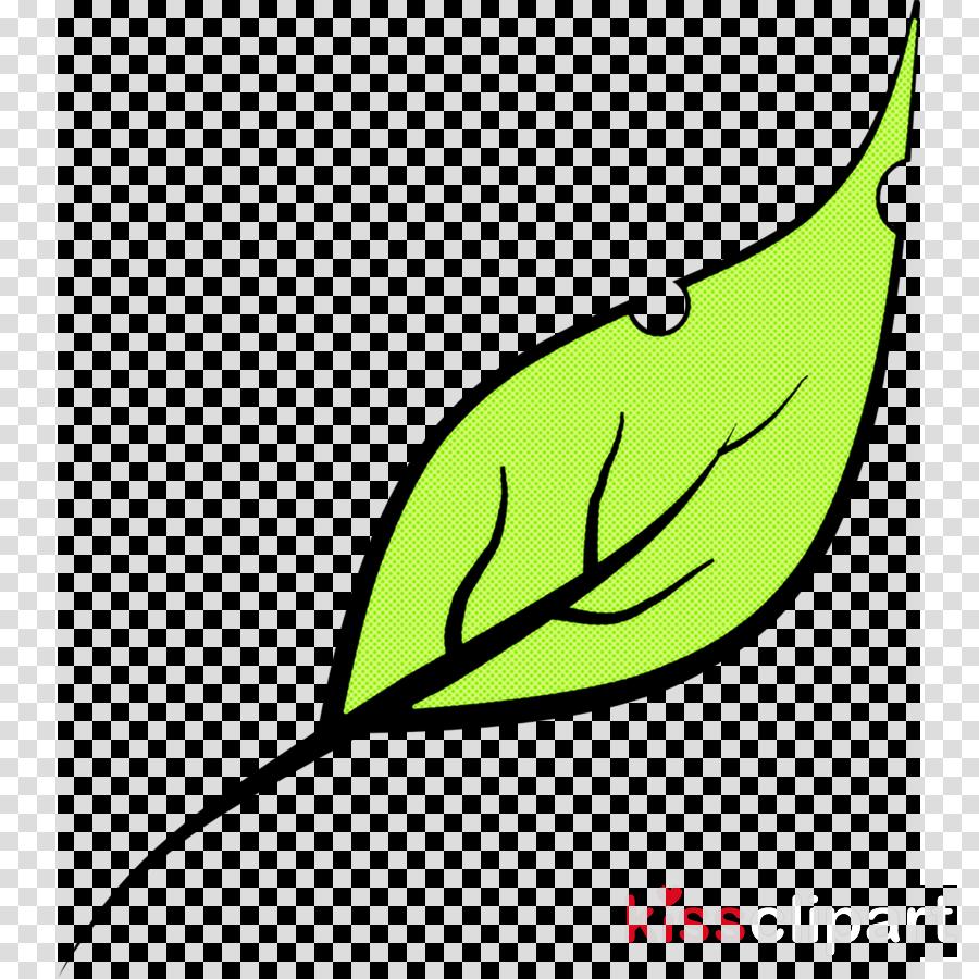 leaf green plant tree plant stem