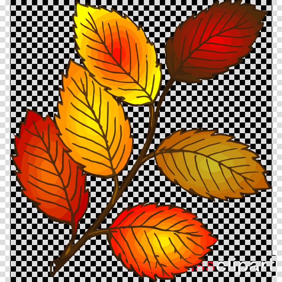 autumn leaf yellow leaf leaf