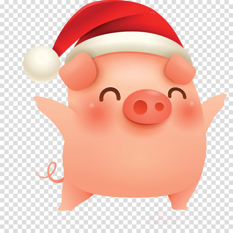 merry christmas pig cute pig