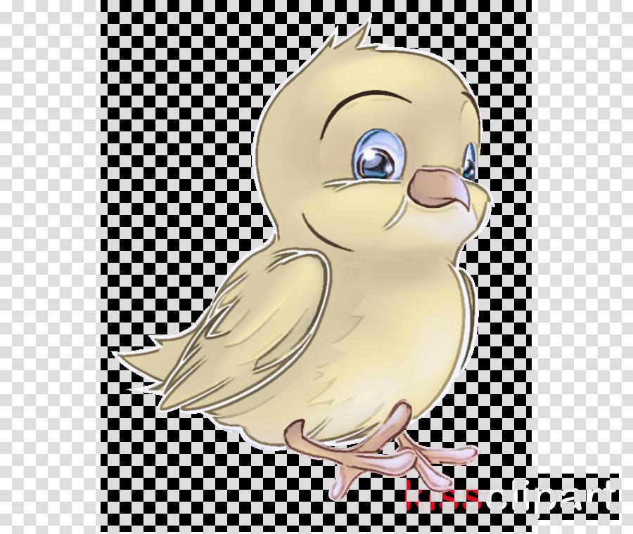 cartoon bird beak parrot animation