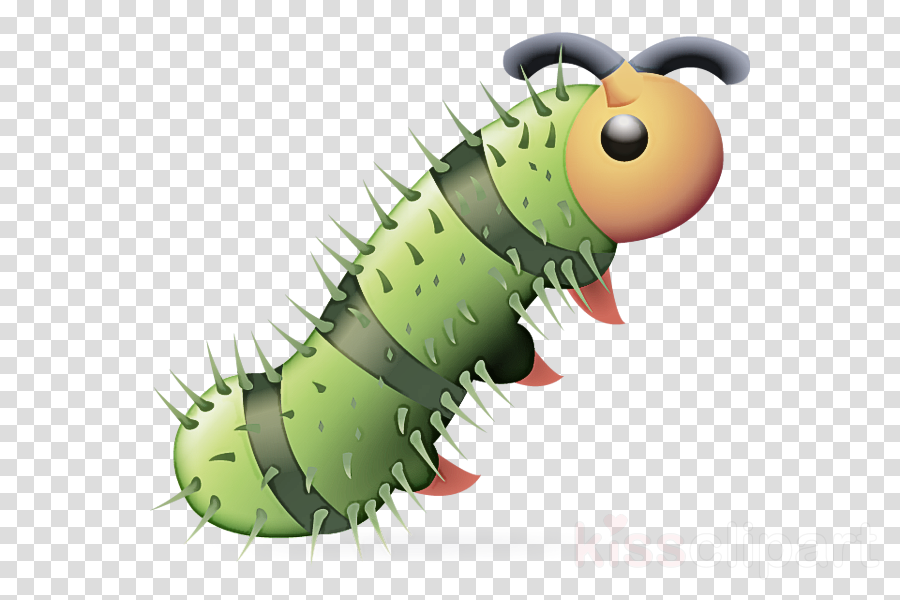 caterpillar insect larva cartoon moths and butterflies