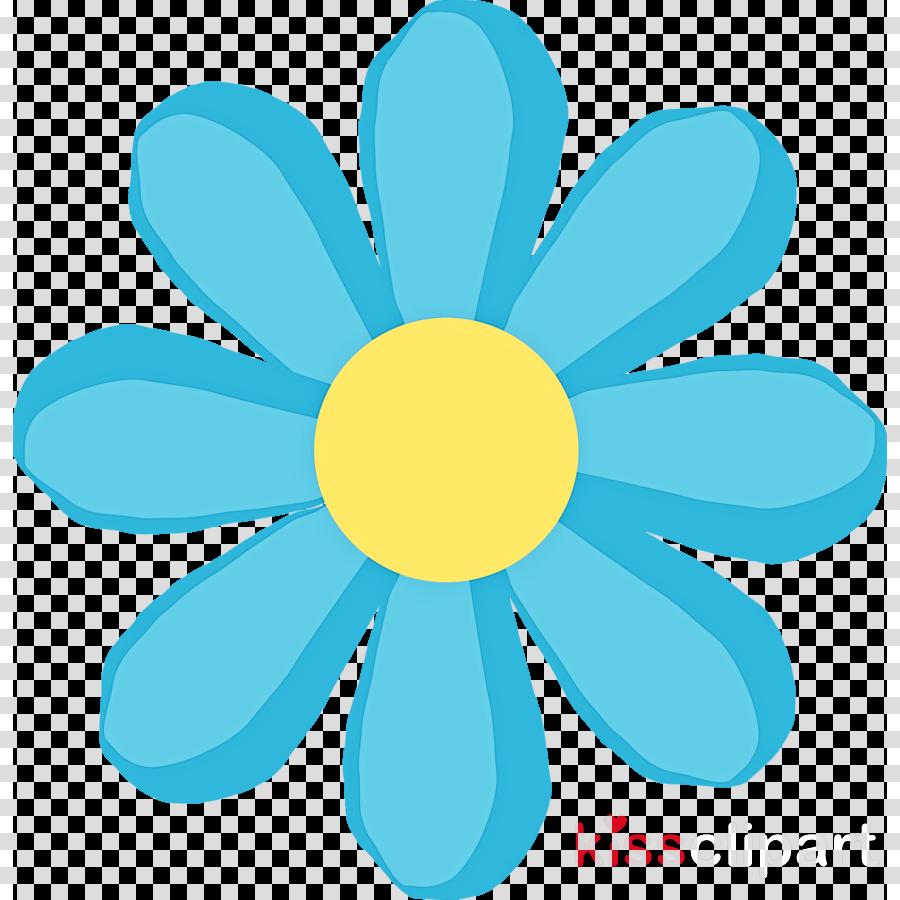blue petal yellow flower chamomile