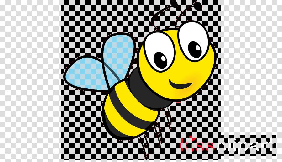 honeybee insect bee yellow black