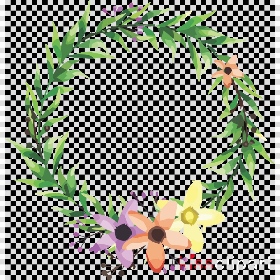 leaf plant wreath tree lei