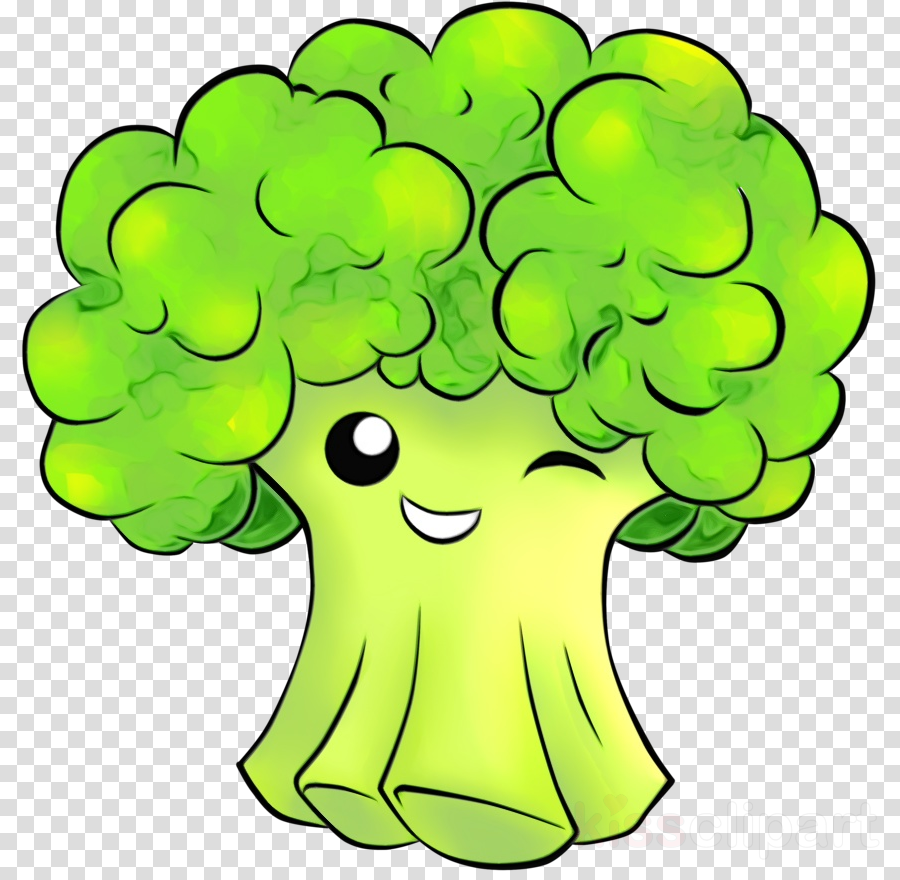 green broccoli cartoon leaf vegetable plant
