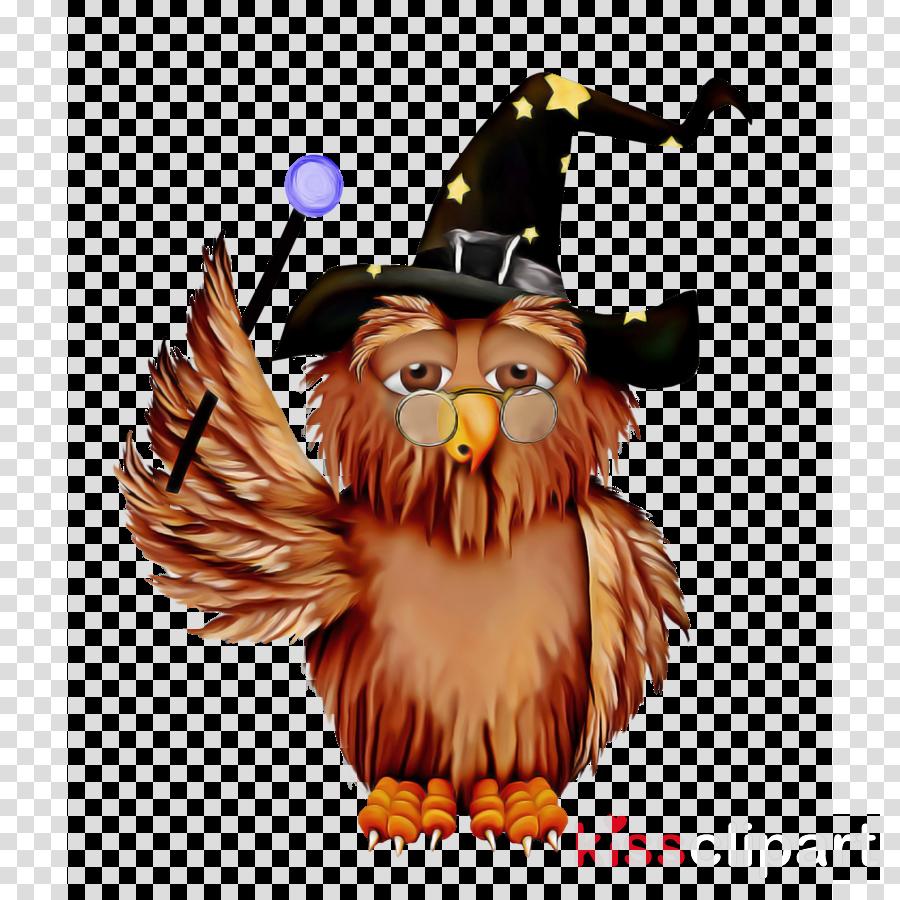 eagle bird of prey bald eagle bird cartoon