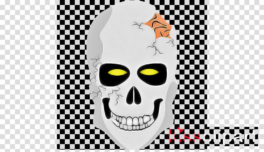 face bone white skull head