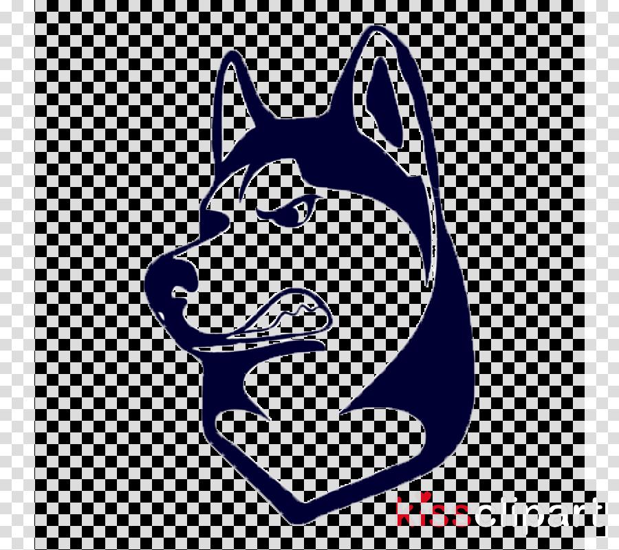 dog siberian husky head alaskan malamute snout