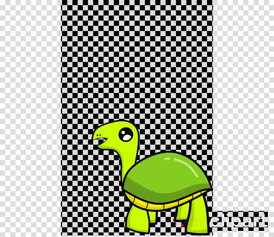 green turtle tortoise yellow cartoon