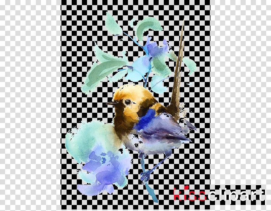 bird watercolor paint bluebird songbird european robin