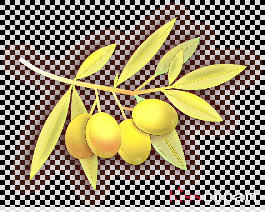yellow plant leaf flower fruit