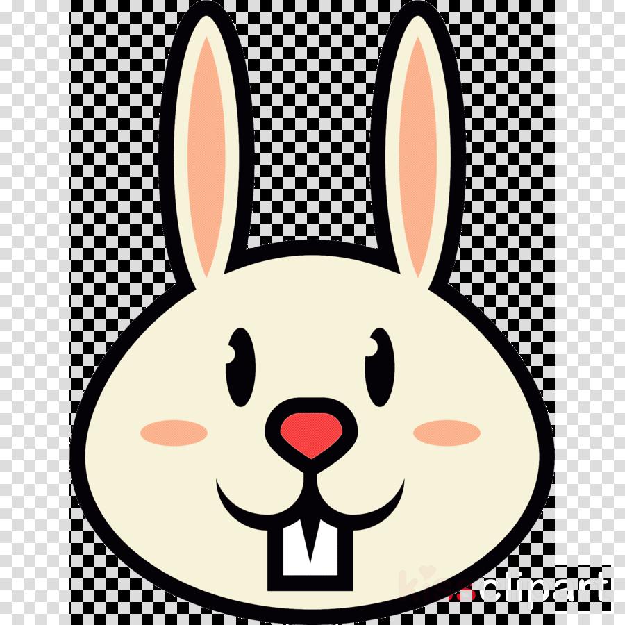 face nose cartoon white rabbit