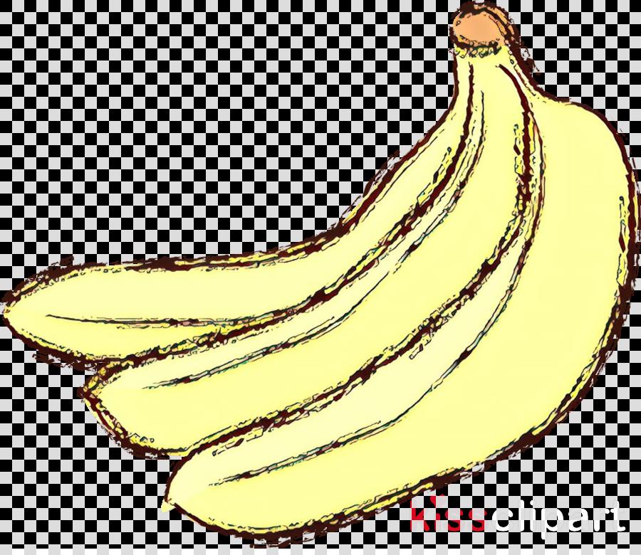 banana family banana saba banana cooking plantain fruit